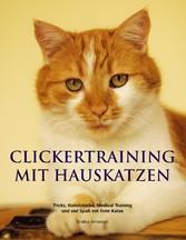 Clickertraining mit Hauskatzen - Tricks, Kunststücke, Medical Training und viel Spaß mit Ihrer Katze - Andrea Amberger