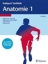 Endspurt Vorklinik: Anatomie 1 - Die Skripten fürs Physikum