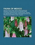 Fauna of Mexico: Mexican Tetra, Maize, North American Beaver, Monarch, Pacific Electric Ray, Bighorn Sheep, Cichlasoma Urophthalmus