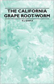 The California Grape Root-Worm - H. J. Quayle