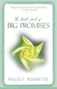 The Little Book Of Big Promises - Peggy Rometo