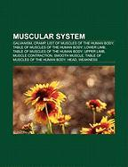 Muscular System: Galvanism, Cramp, List of Muscles of the Human Body, Table of Muscles of the Human Body: Lower Limb