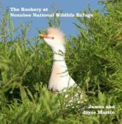 The Rookery at Noxubee Wildlife Refuge - Martin, Joyce