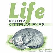 Life Through a Kitten's Eyes