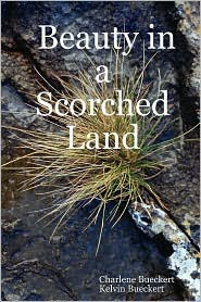 Beauty in a Scorched Land